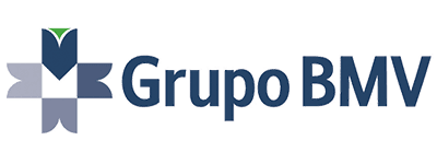 Logo Grupo BMV